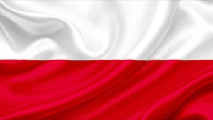 Polish Florida .Biz