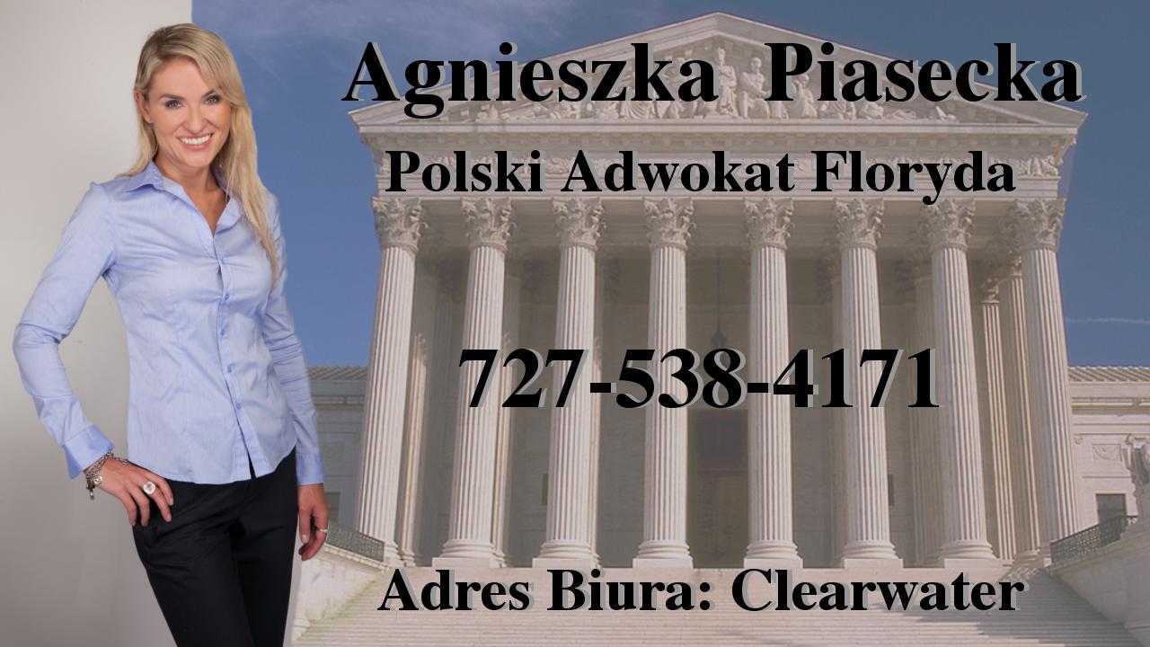 Polscy Prawnicy - Floryda