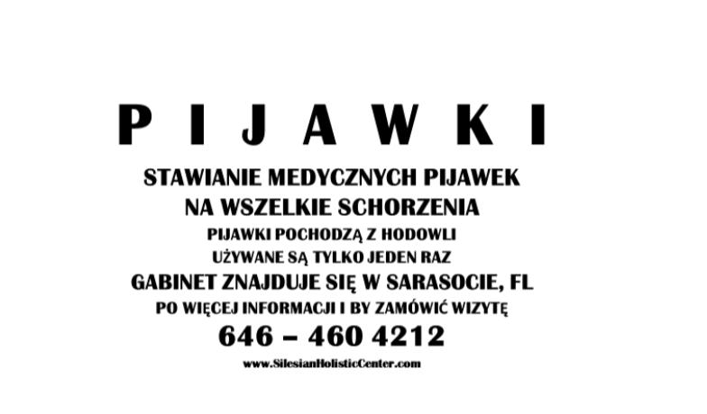 Leech Therapy / Stawianie Medycznych Pijawek – Andrzej Plucinski, HHP